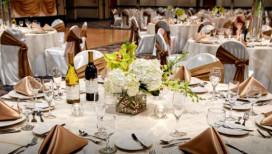 Radisson Hotel at Star Plaza Meeting Merrillville Banquet
