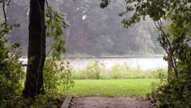 Bluebird Trail to Wetland