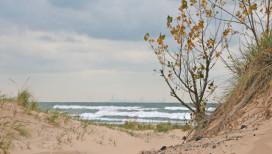 Marquette Park Gary Beach