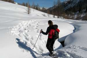 Snow Shoeing in Lory State Park