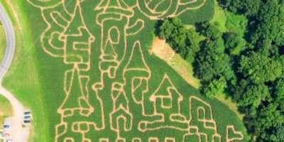 Get Lost in Asheville's Corn Maze