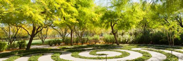 Sustainability Sunnylands Wellness