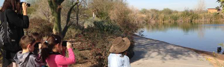 Family Bird Walk at Veterans Oasis Park