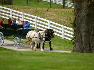 Shaker Village Carriage Ride