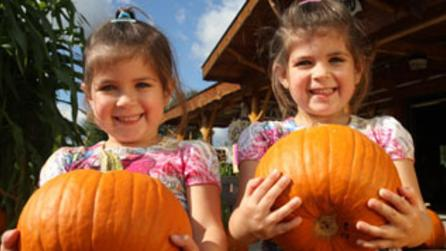 Bankers Orchard kids and pumpkins Photo Courtesy of the Adirondack Coast Visitors Bureau