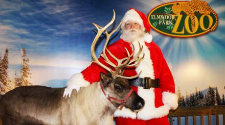 Elmwood Park Zoo Santa