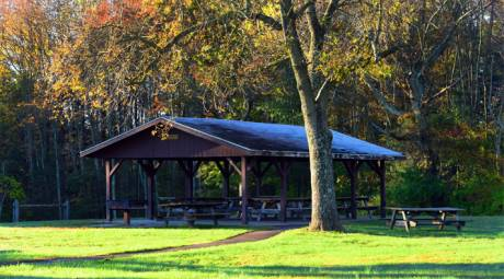 TOP PICNIC SPOTS - EVANSBURG STATE PARK