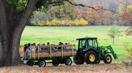 TOP FALL FAIRS, FESTIVALS AND CONCERTS