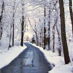 Winter at Fox Island