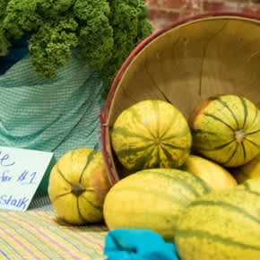 Shopping Farmers Markets Highlight