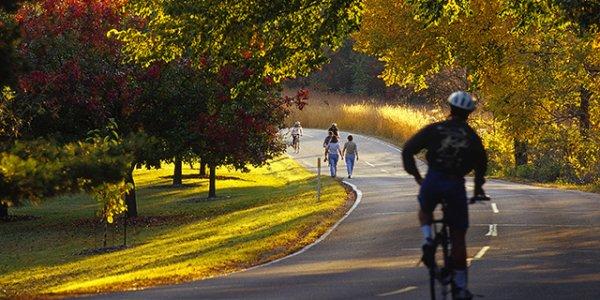 UW-Madison Arboretum Trails