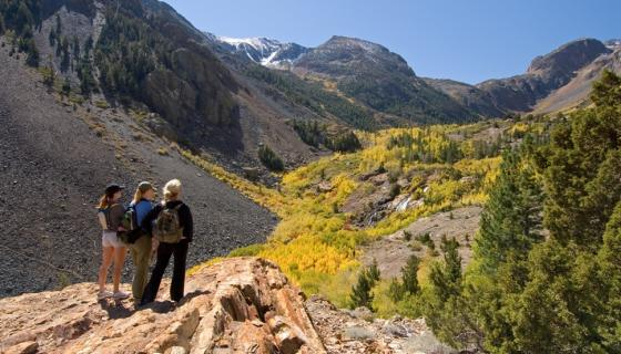 Lundy Canyon Fall Colors