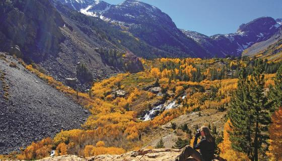 Lundy Canyon with Fall Colors