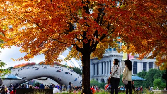 20 Chicago Tours, Attractions & Events to Catch This Fall