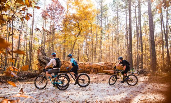 Seven of the Best Trails to Hike, Bike and Run in Raleigh, N.C.