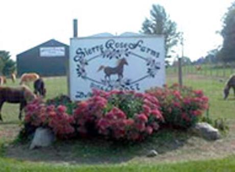SierraRose Farms