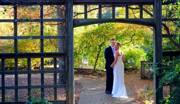 Lauren Davis Wedding