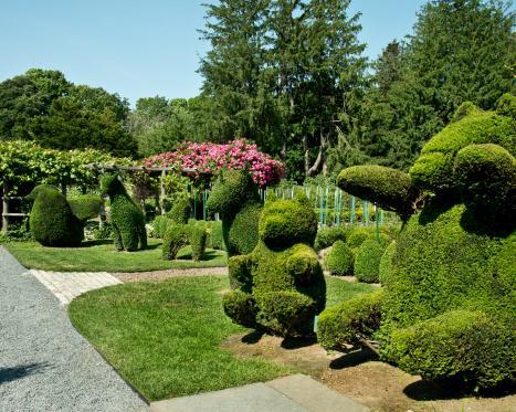 Green Animals Topiary