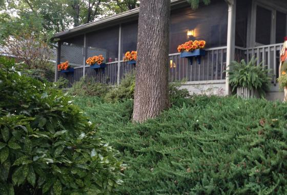 Cabins, Cottages and Vacation Rentals