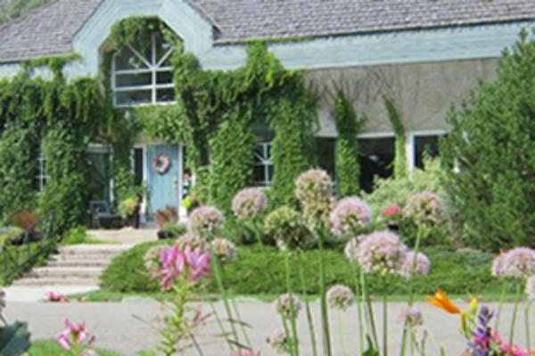Flower garden at a bed and breakfast