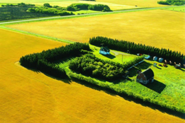 Aerial view of a farm surrounded by a stand of trees