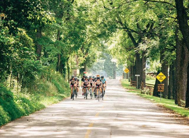 Race - Bike