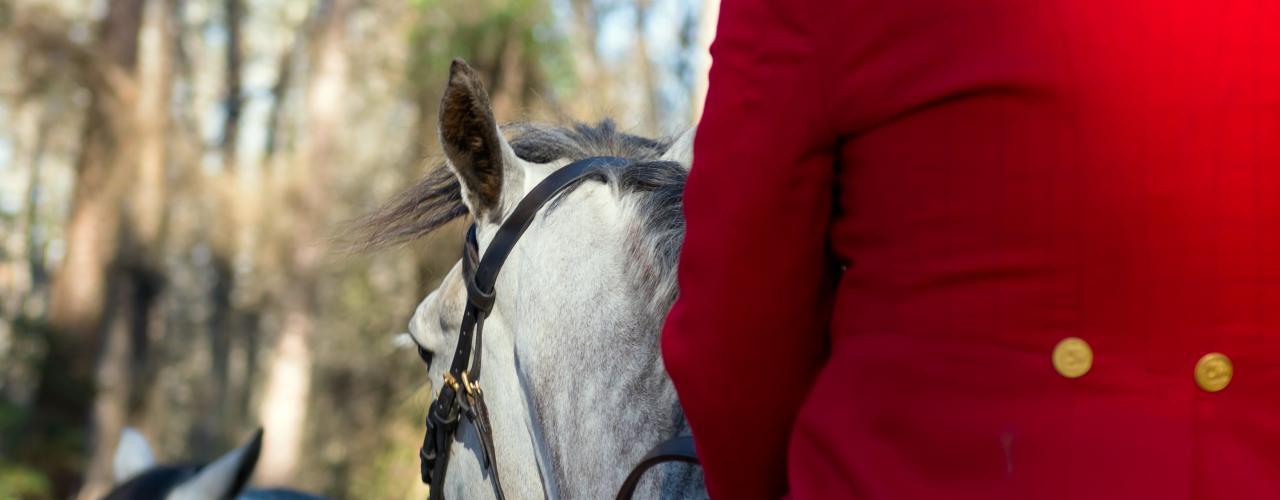 Red Coat Rider