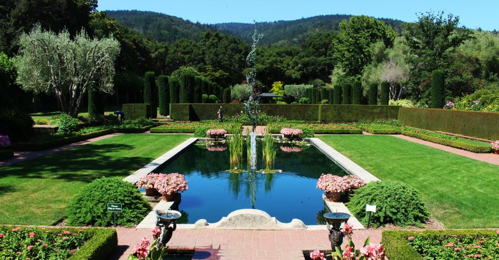 Gardens are blooming in San Mateo County/Silicon Valley