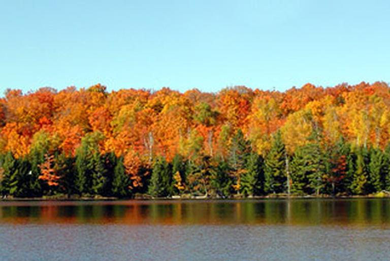 fall colors by the lake