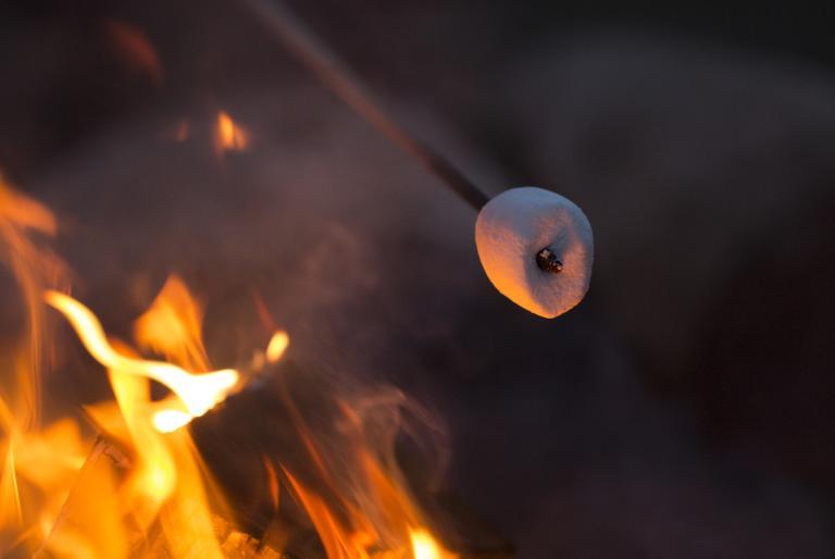 campfire marshmallow