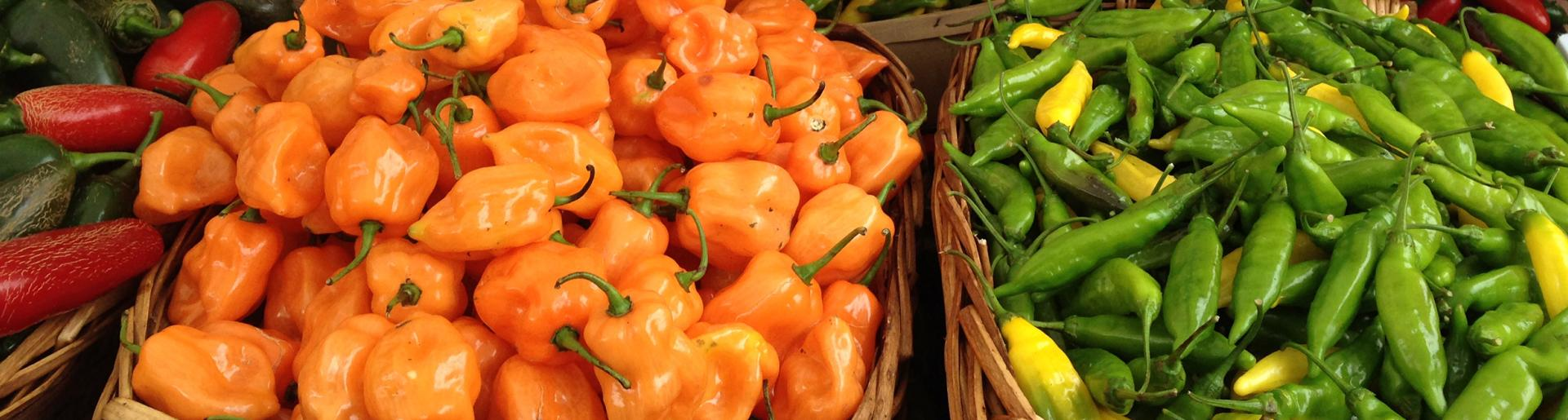 Savory Accents: Peppers