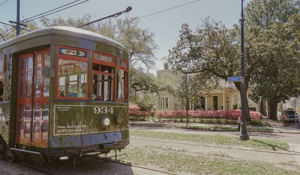 Streetcar - Uptown Spring Color - Azaleas - St. Charles Avenue