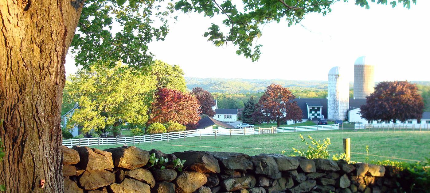 Ted Bohlk - Hilltop Hanover Farm