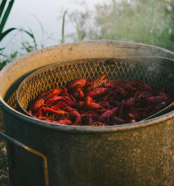 Crawfish Boiling in Pot