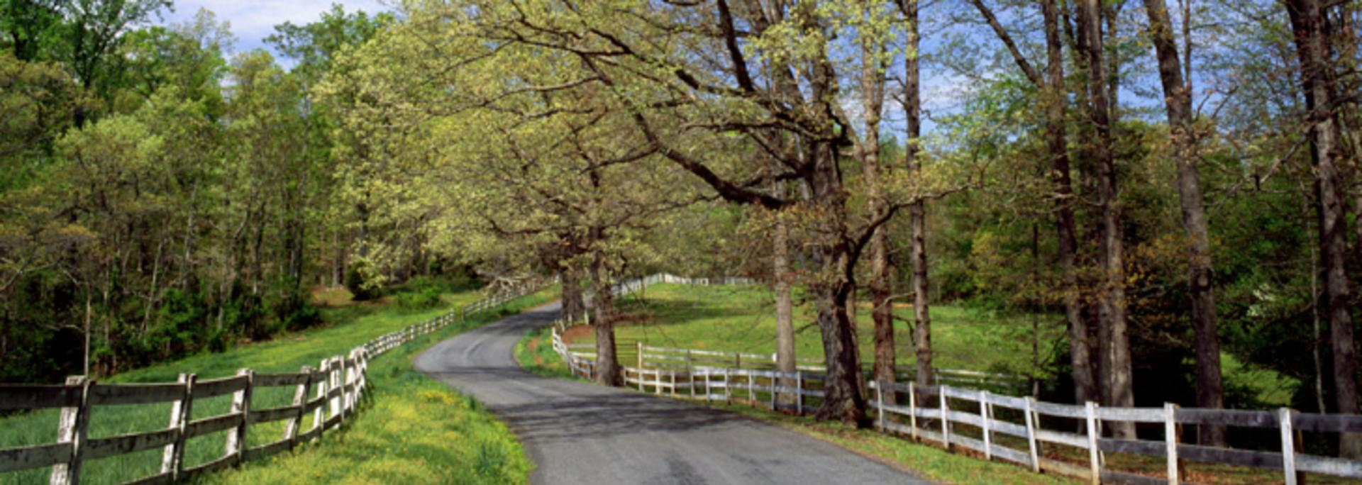 Country Byway