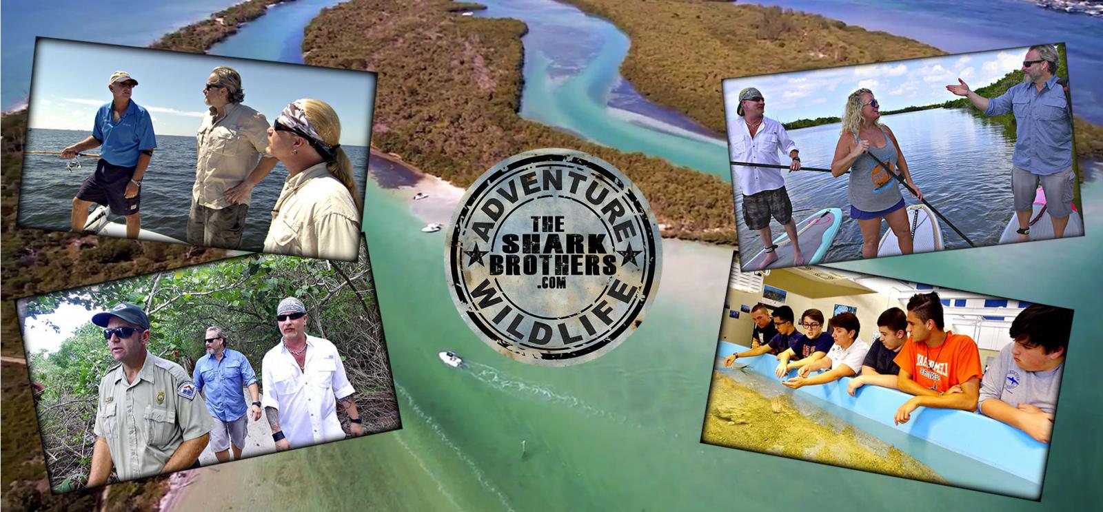 Adventure and Wildlife