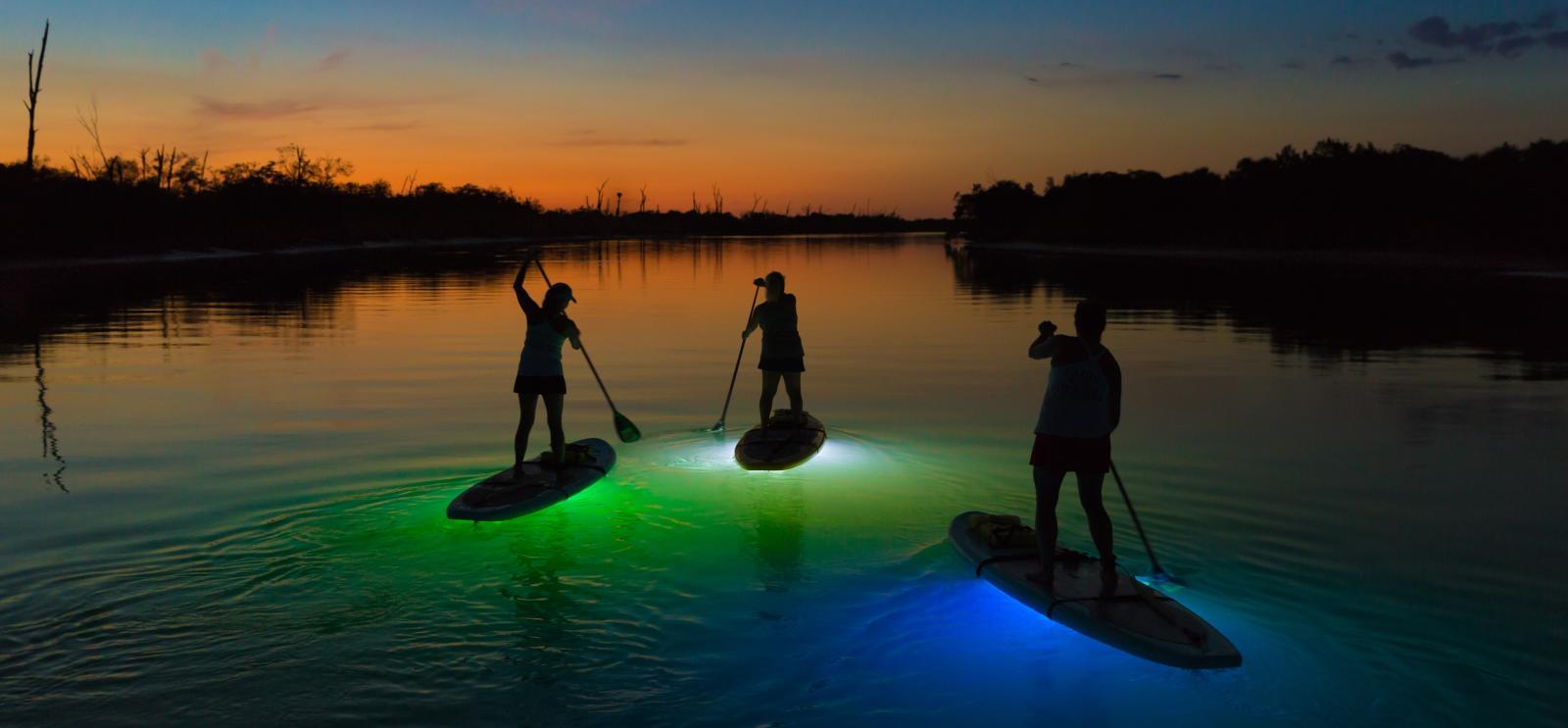 Lighted Night SUP