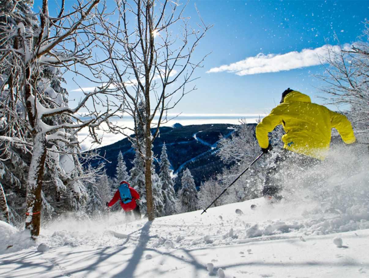 Image result for le massif ski
