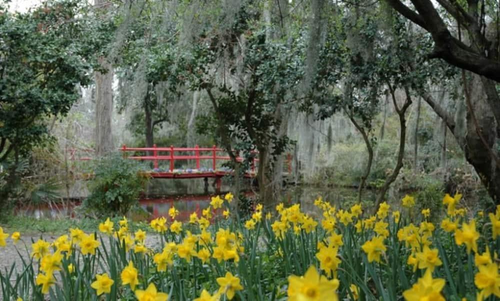 Magnolia Plantation & Gardens | Charleston Area CVB