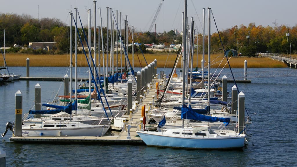 Image of Cooper River Marina