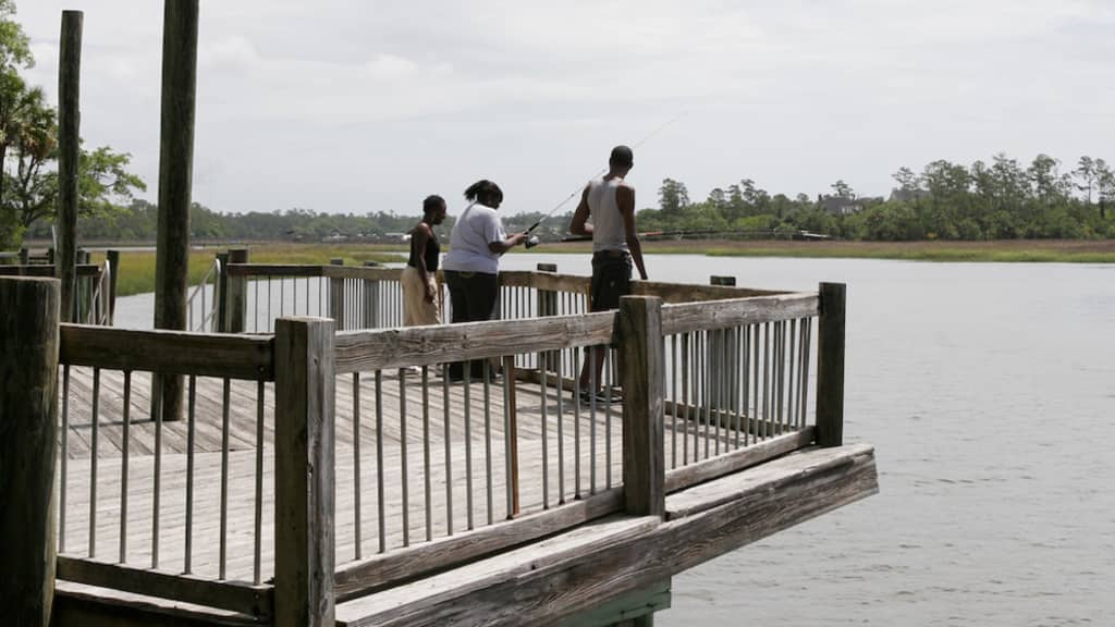 Image of Palmetto Islands County Park