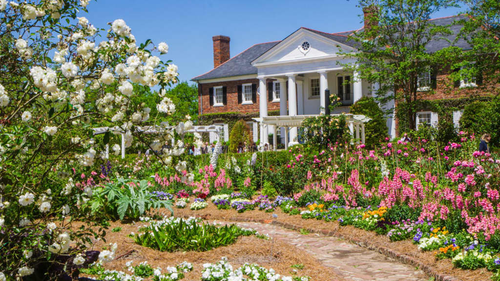 Image of Boone Hall Plantation