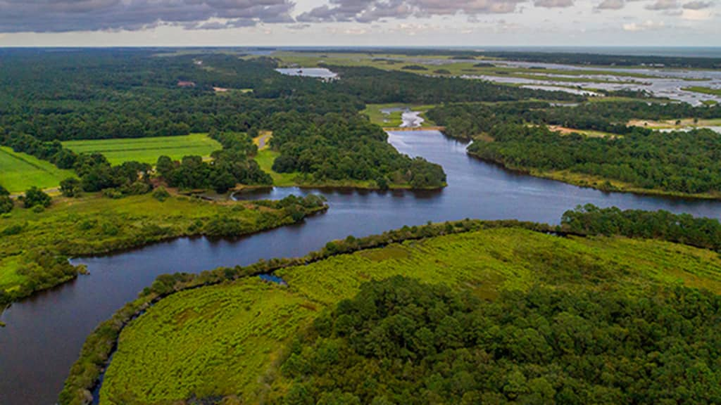 Image of Kiawah River