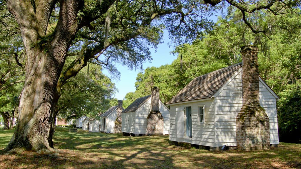 Image of McLeod Plantation Historic Site
