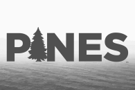 Pines Coffee Logo