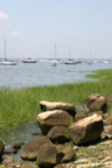 Garvies Point Museum & Preserve