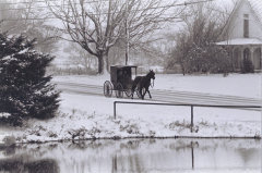 Amish Trail