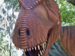Interact with the Dinosaurs
