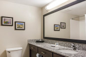 Comfort Suites Guest Room Bathroom