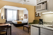 Comfort Suites Maingate East King Suite